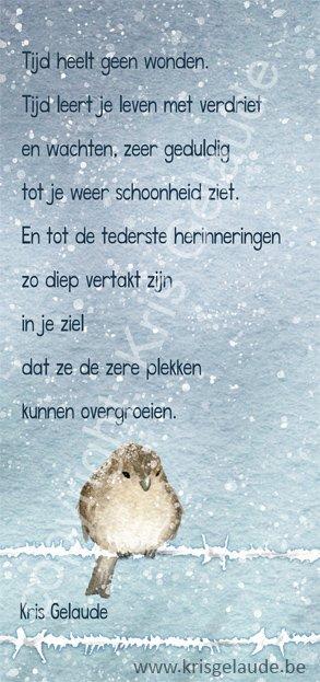 Kris Gelaude - Tijd heelt geen wonden - illustratie: Joke Eycken