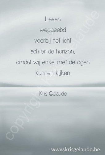 Kris Gelaude - Leven weggeëbd - Illustratie Joke Eycken