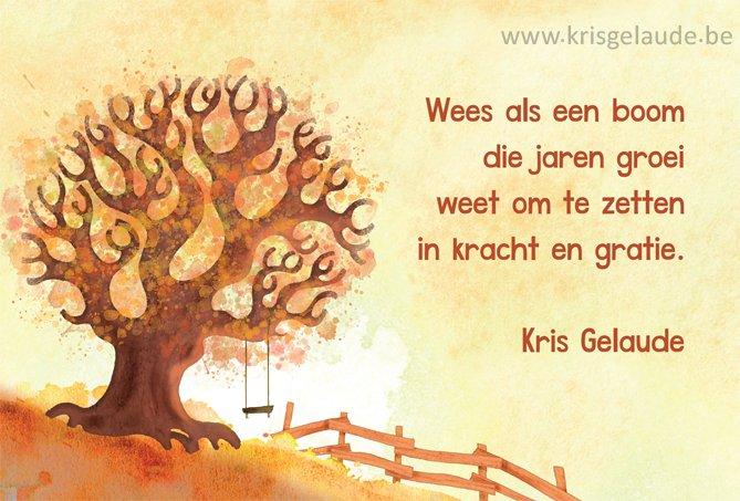 Kris Gelaude - Wees als een boom